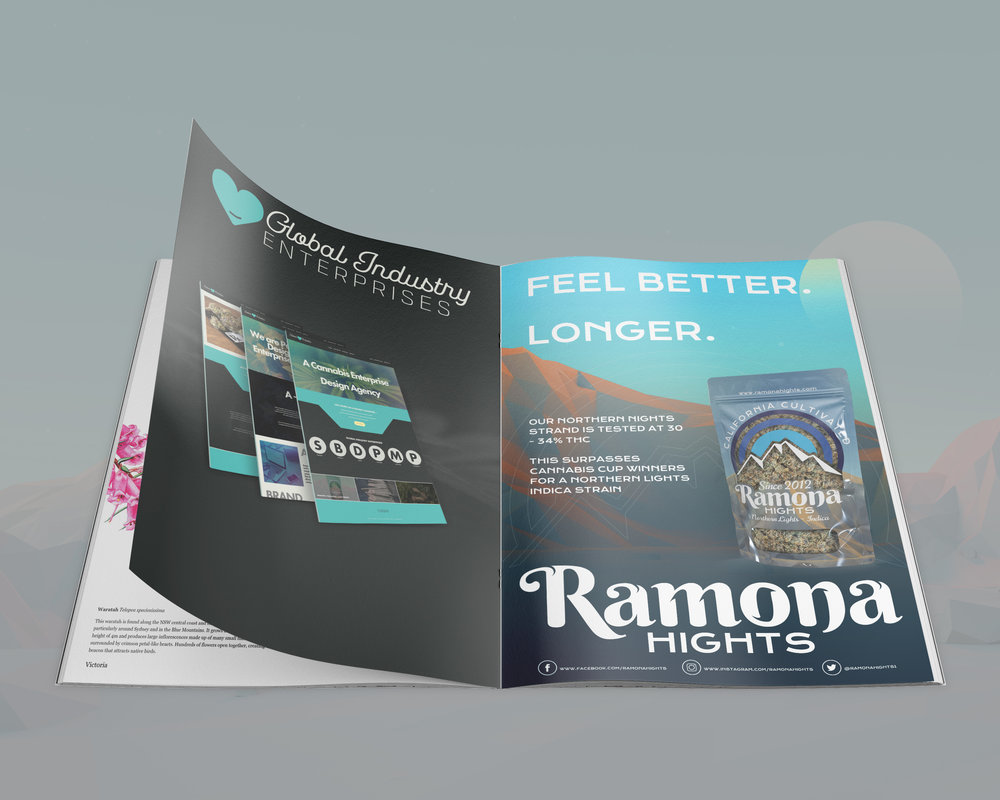 RAMONA HIGHTS-magazine-mockup.jpg