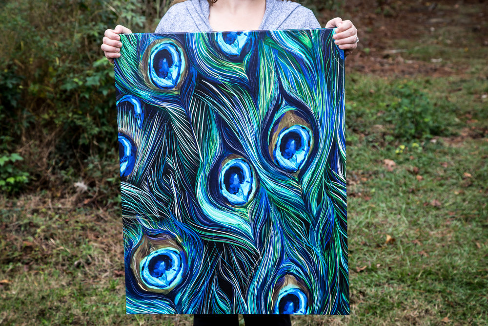 Peacock Canvas-1.jpg
