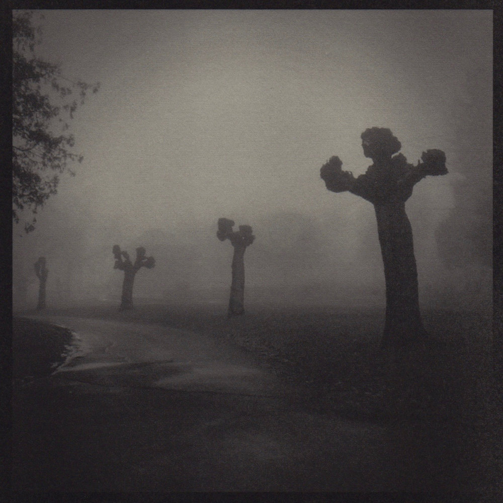 Cemetery Fists