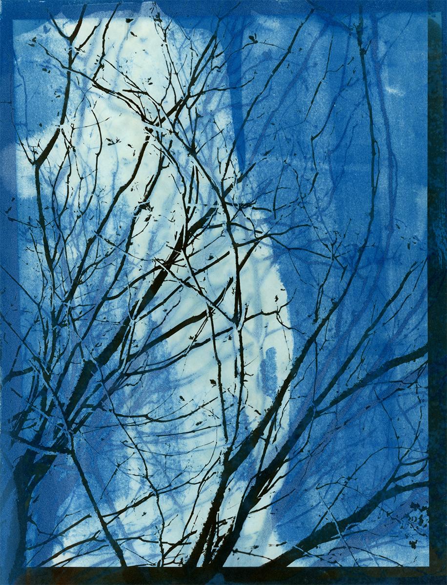 Blue Winter Shadow