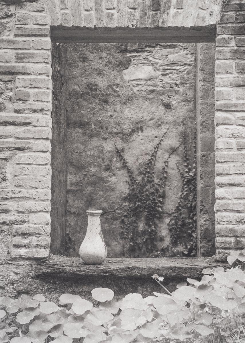 Vase, Bantry House, County Cork, Ireland
