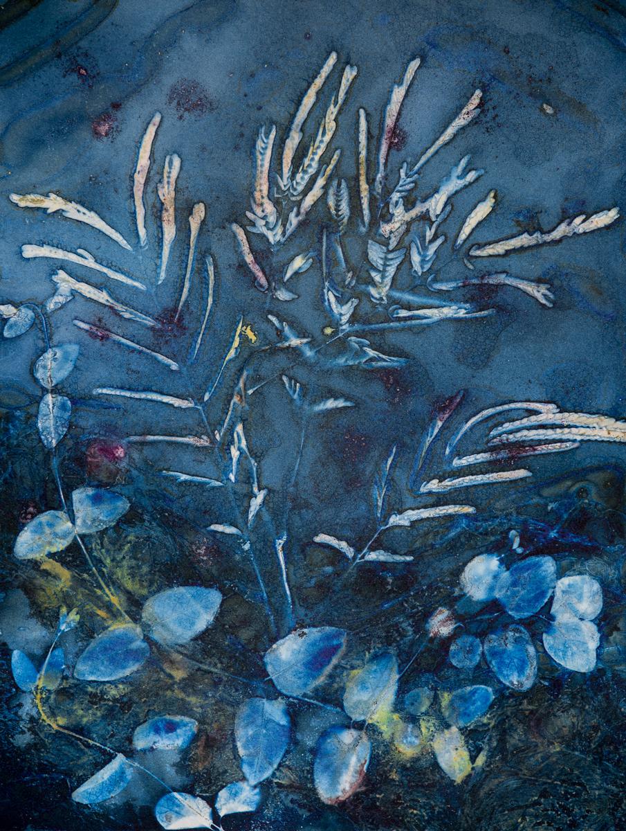 Under Water Fantasy