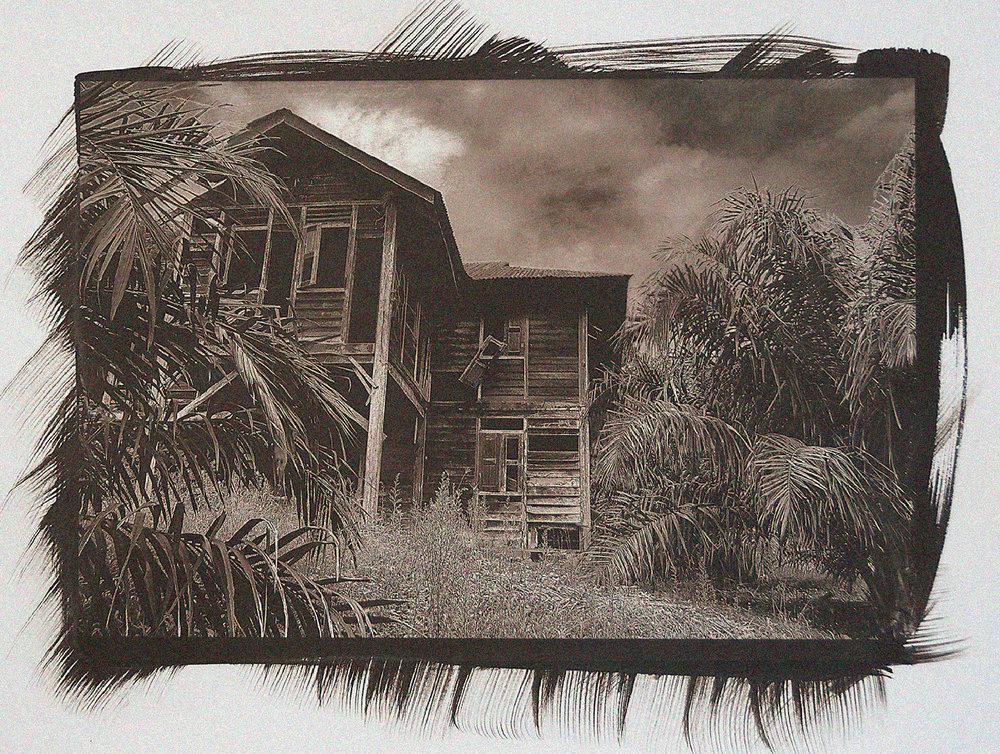Haunted Grove