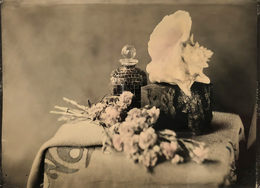 Conch Shell with Carnations
