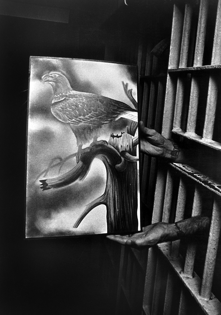"""Free Bird"" From the essay ""Florence State Prison"" 1986"