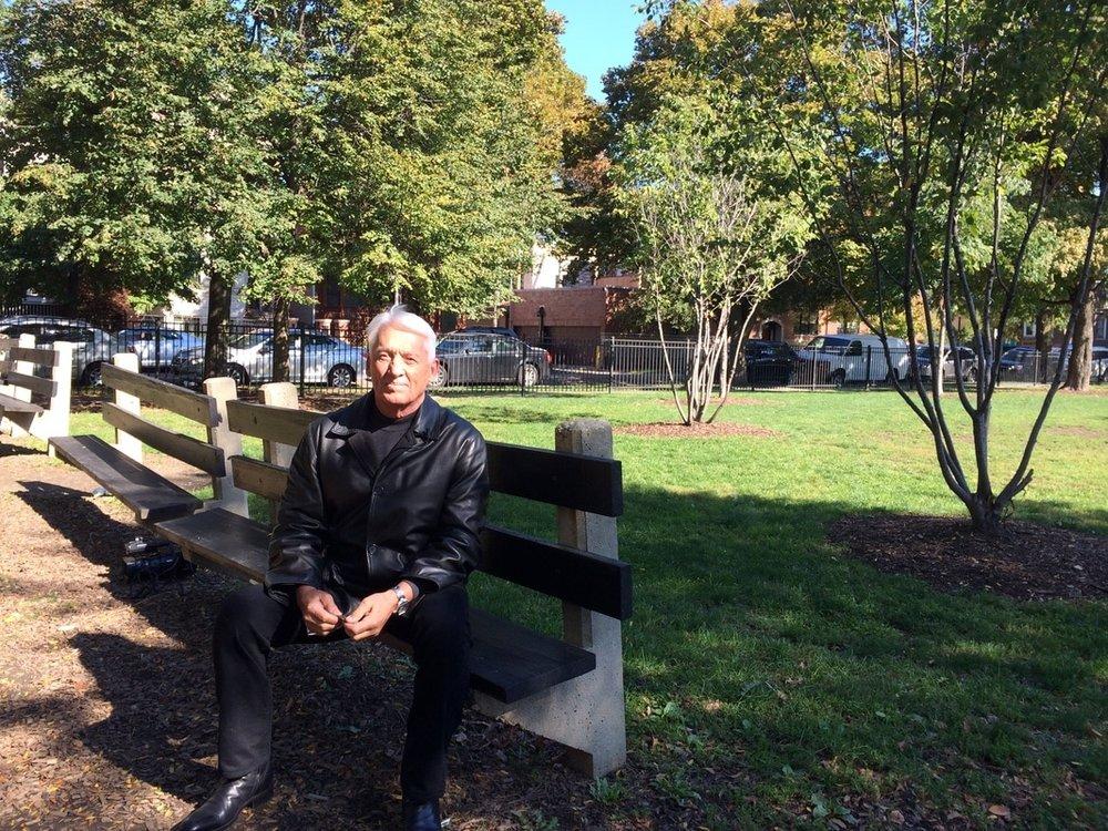 A bench in Hamlin Park