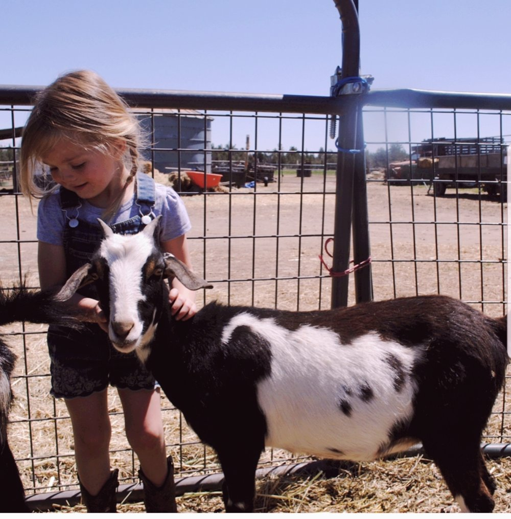 The kiddos at one of our favorite Central Oregon Ranches celebrating Emery's birthday and the animals that nourish us!