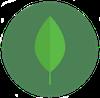 Biochite.png