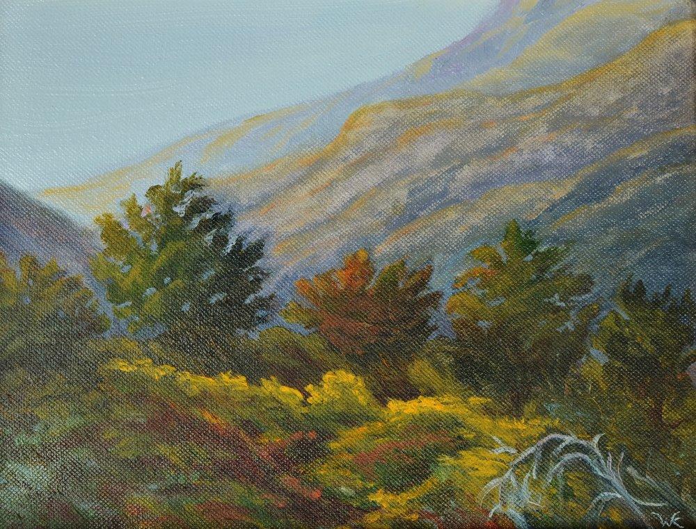 Last Light, 8x10 Oil on Canvas