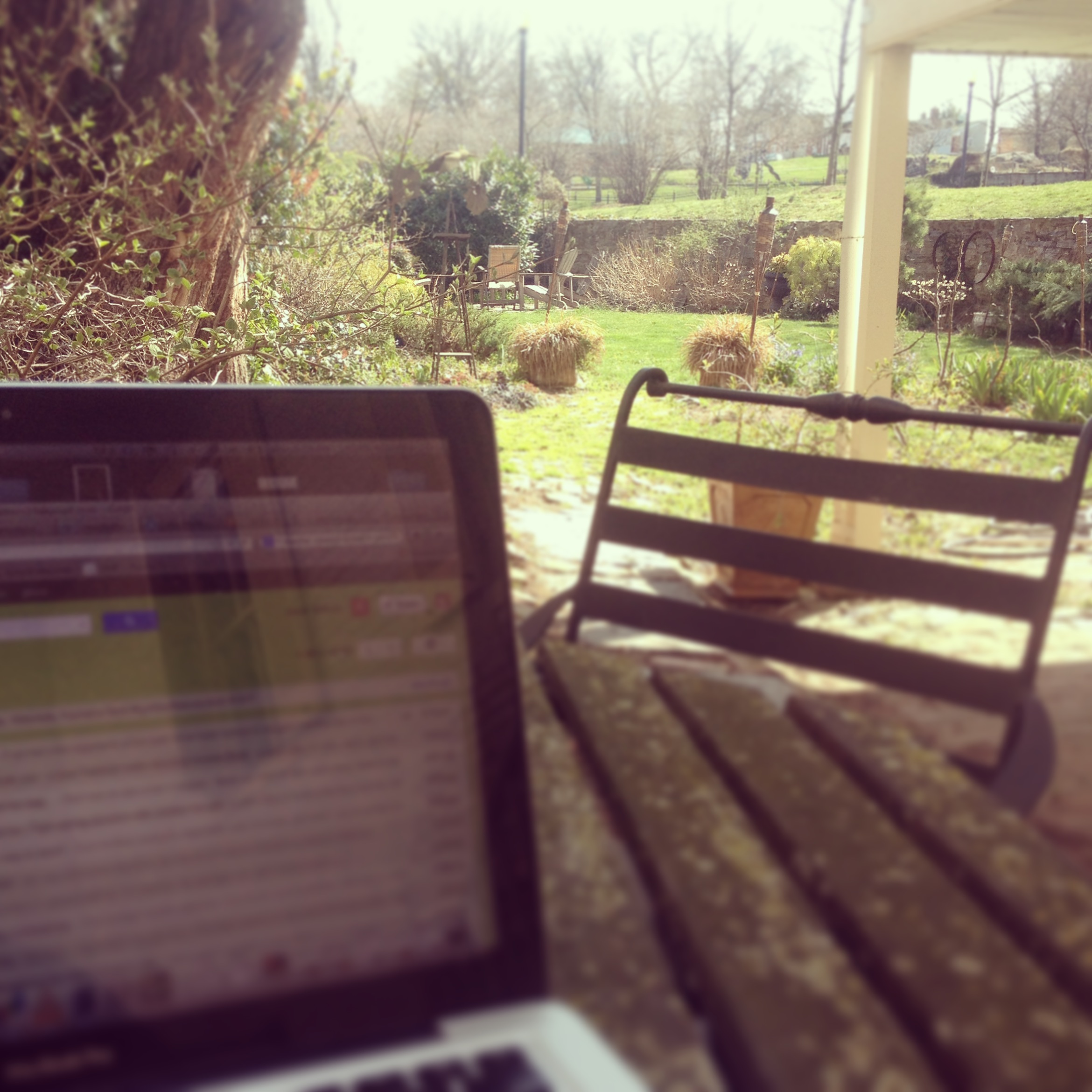 working in the backyard