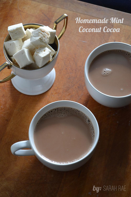 Homemade-Mint-Coconut-Cocoa
