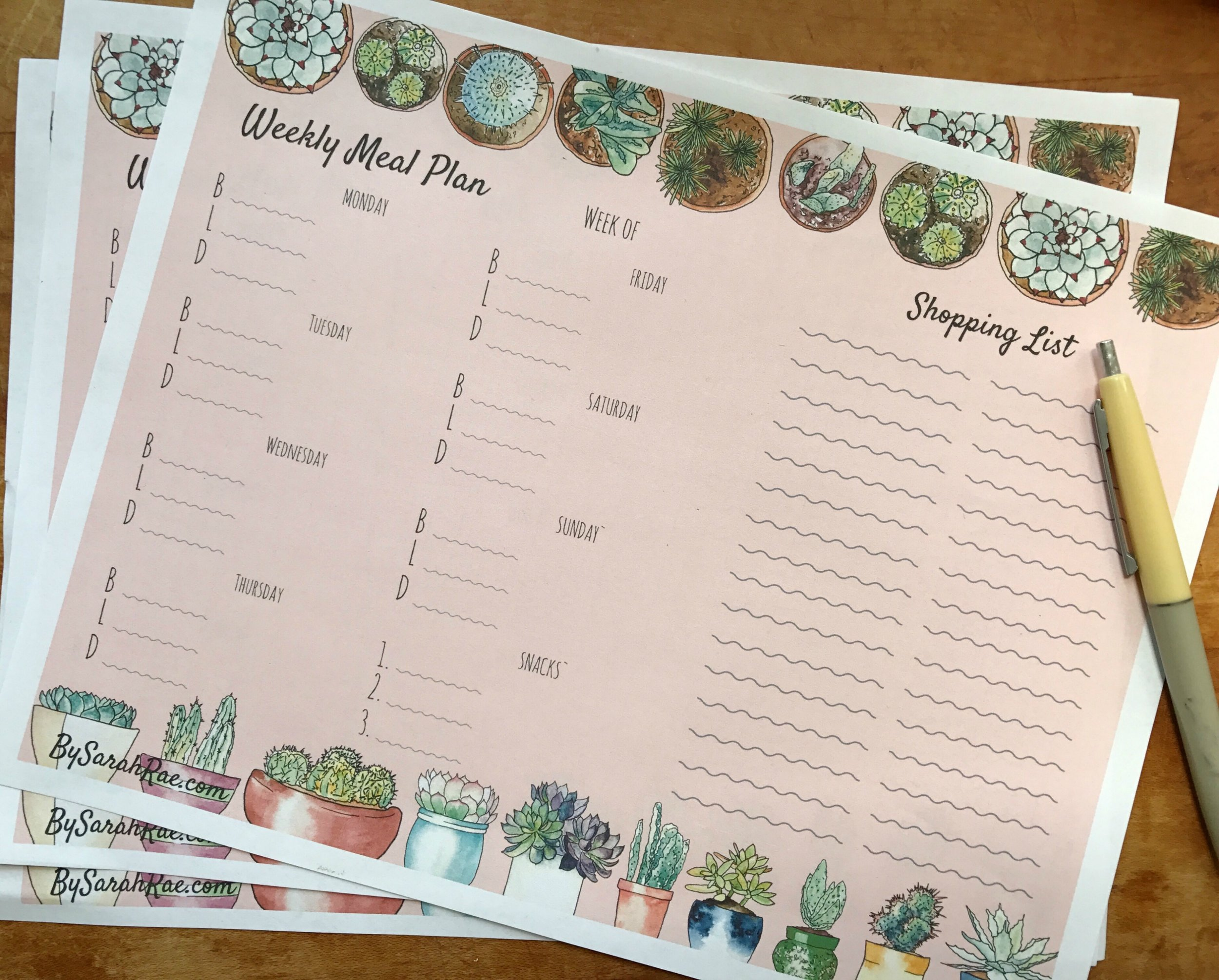 Summer Succulent Weekly Meal Planner | BySarahRae.com