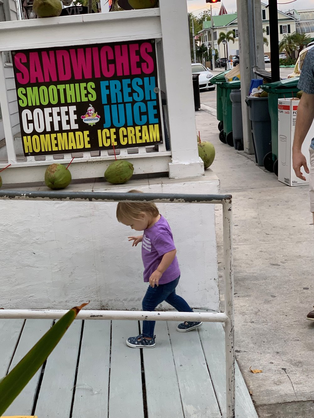 Key West Florida | Traveling with a toddler | By Sarah Rae