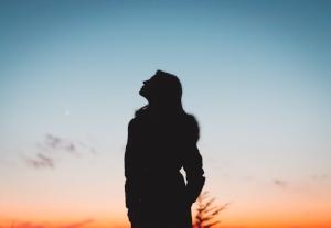 backlit-dawn-dusk-1027131.jpg
