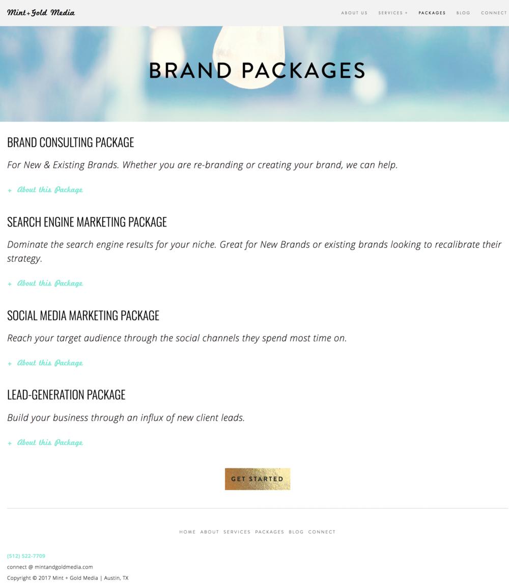 Web Marketing Packages   Austin  TX web marketing bundles — Mint Gold Media.png
