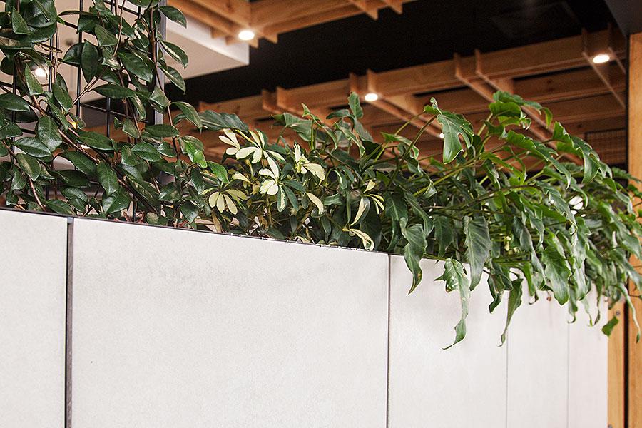 Raw Energy Birtinya – Fresh Healthy Café Fit Out Design