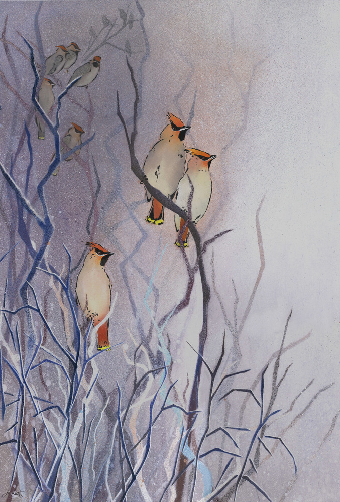 Waxwing Flock in Coastal Mist