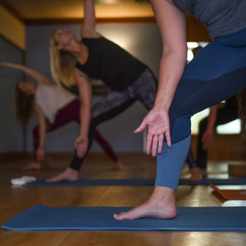 Slow Burn - This slower paced, yet challenging, slow flow practice will help to build strength, stamina and flexibility. The slow flow will emphasize moving from the core using slow progressive, vinyasa sequences with longer holding standing and core postures.