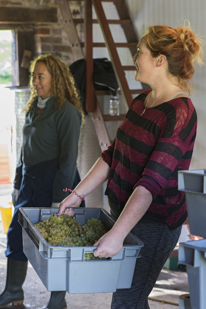 Jenny & Maddi Harvest 17 093.jpg