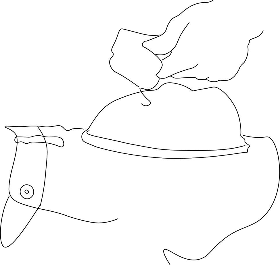 iron illustration.jpg