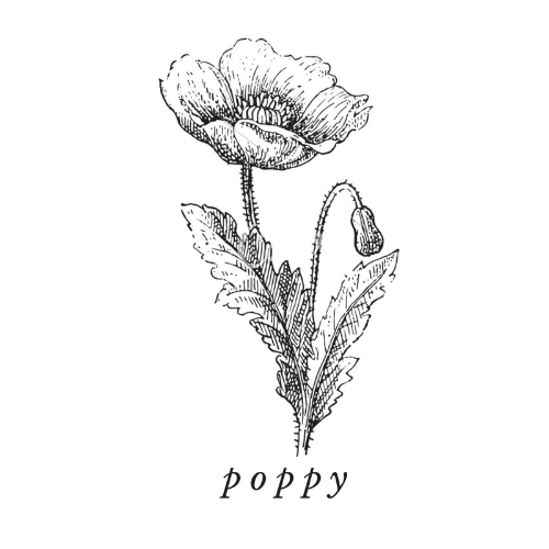 Poppyseed Oil