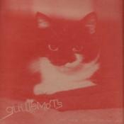 GUILLEMOTS i-saw-such-things-in-my-sleep-vinyl-ten-inch.jpg