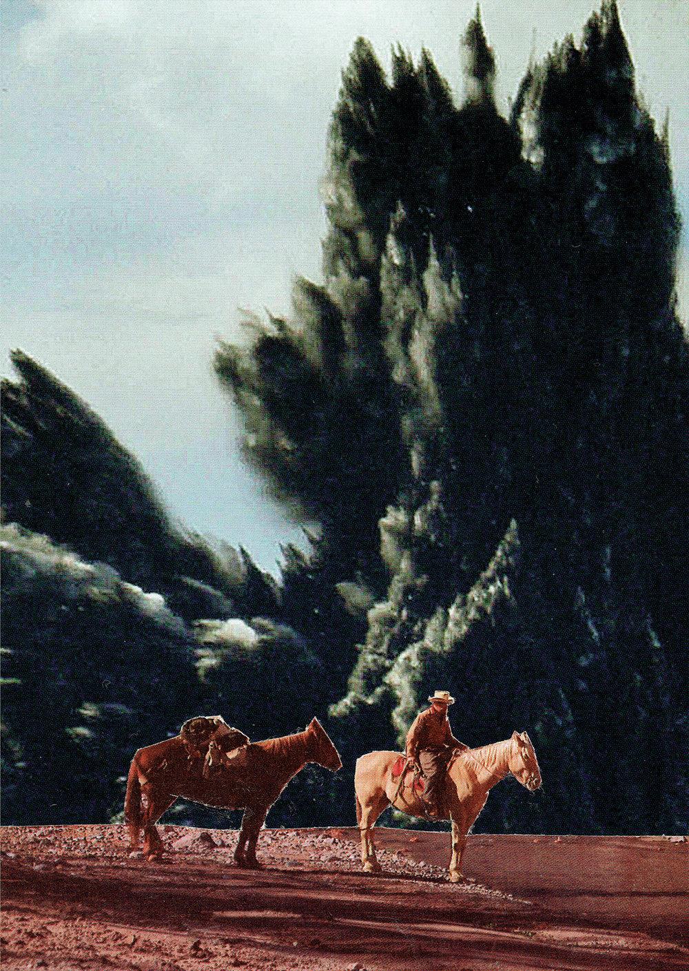 Steven Quinn - Lone Horseman.jpg