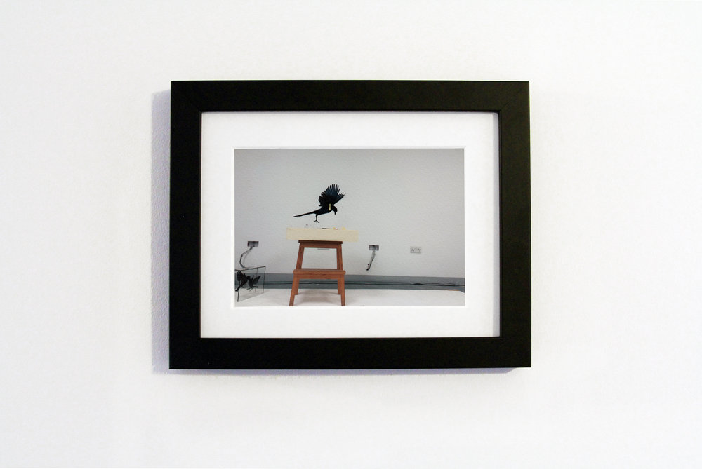 Black untitled.jpg