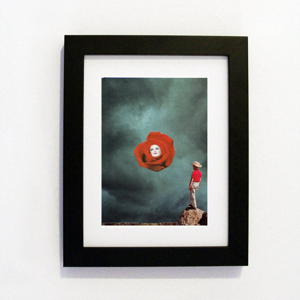 Black Frame desert Rose.jpg