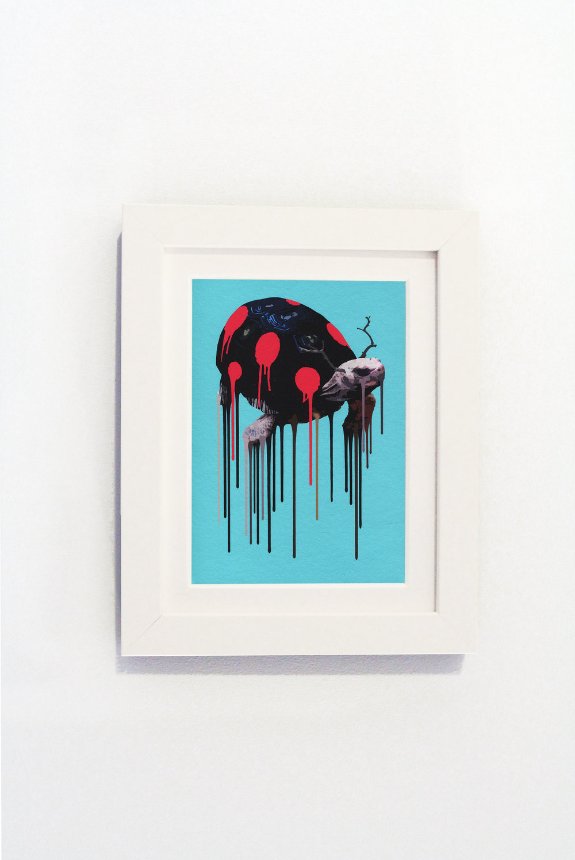 Tortybug White Frame.jpg