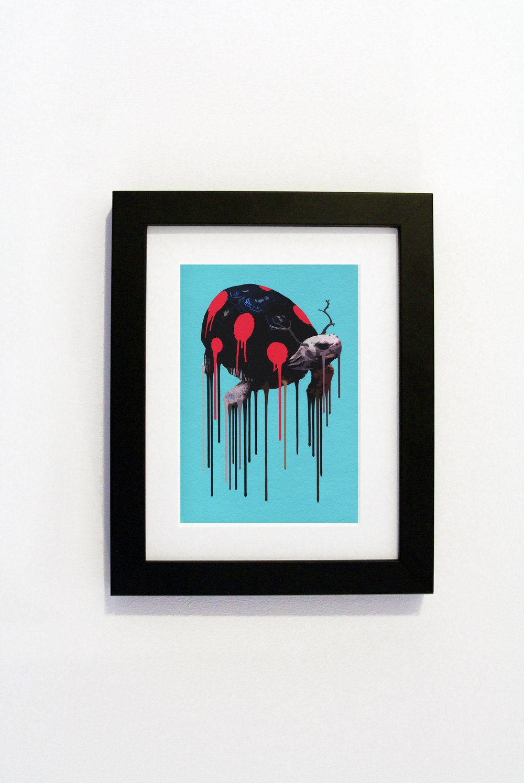 Tortybug Black Frame.jpg