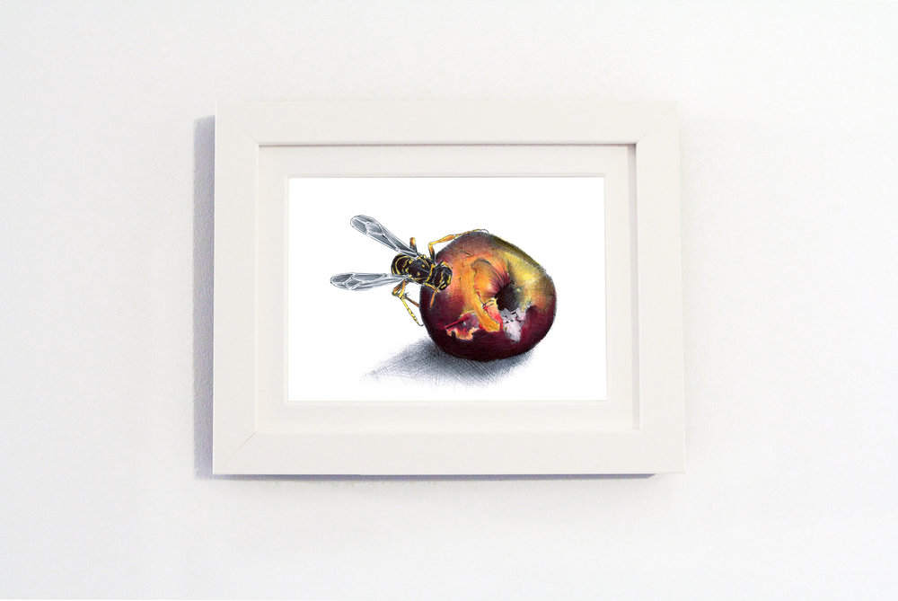 Nature Peach White frame.jpg