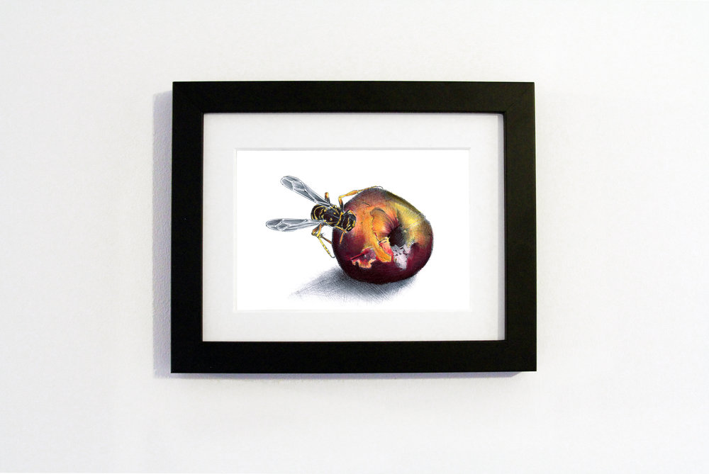 Nature Peach Black frame.jpg