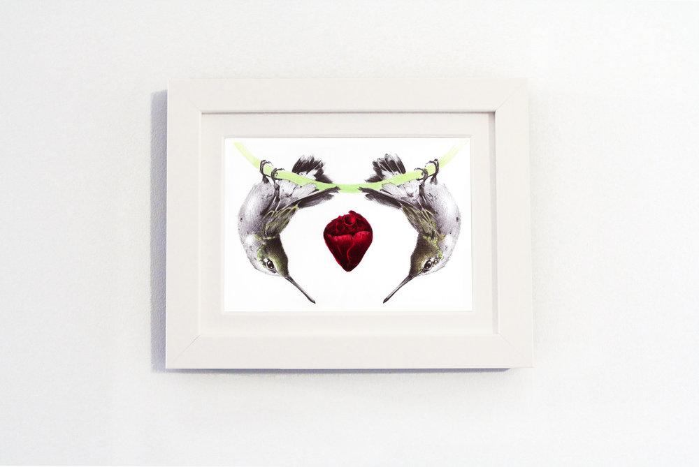 birds White frame.jpg
