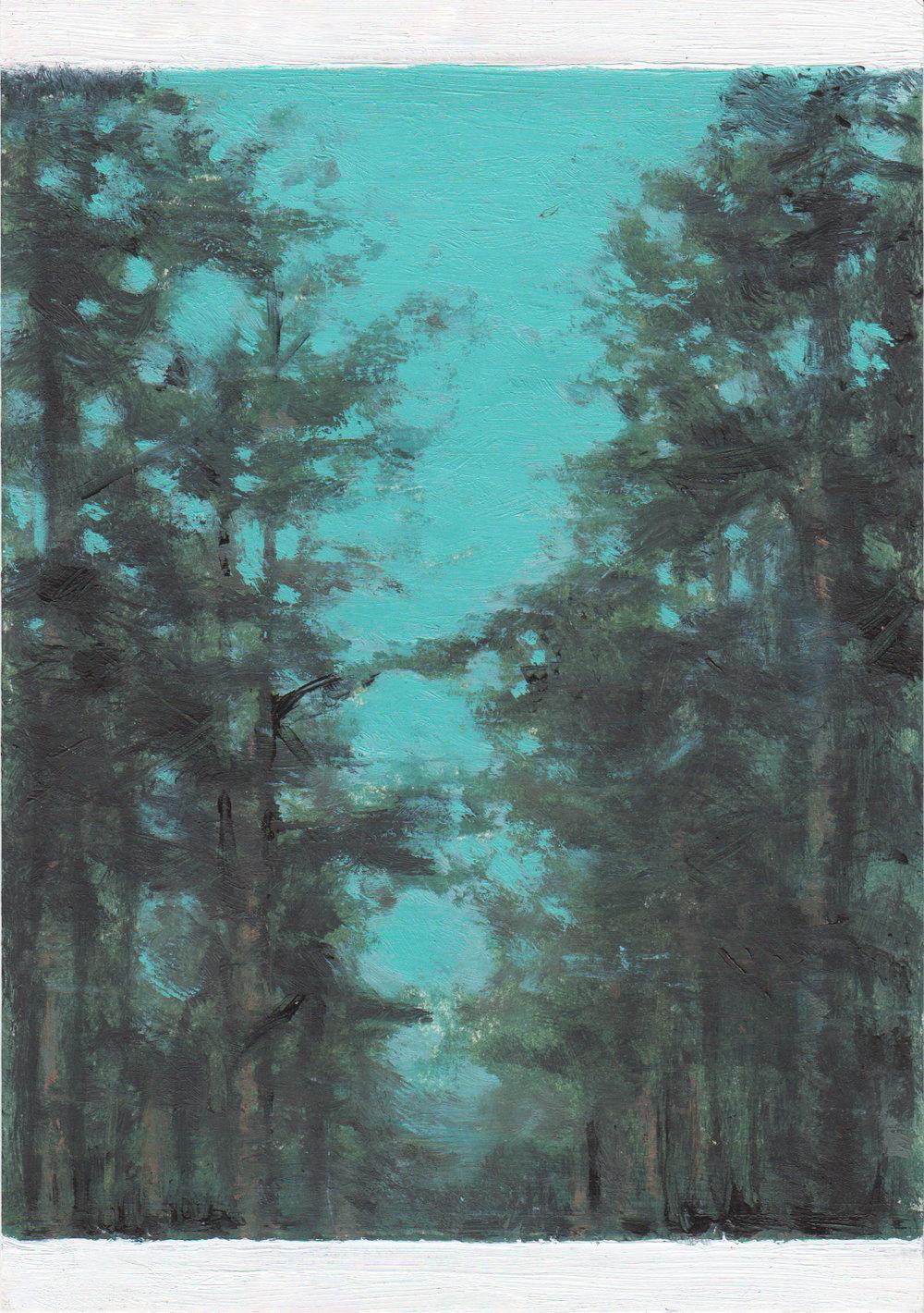 Kate Sherman- Forest, Dusk.jpg