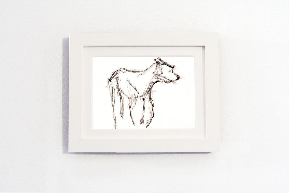 Black Dog White Frame.jpg