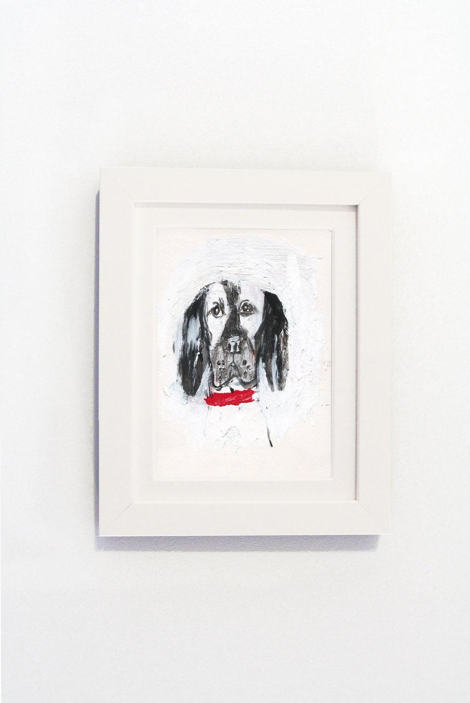 Spaniel White Frame.jpg