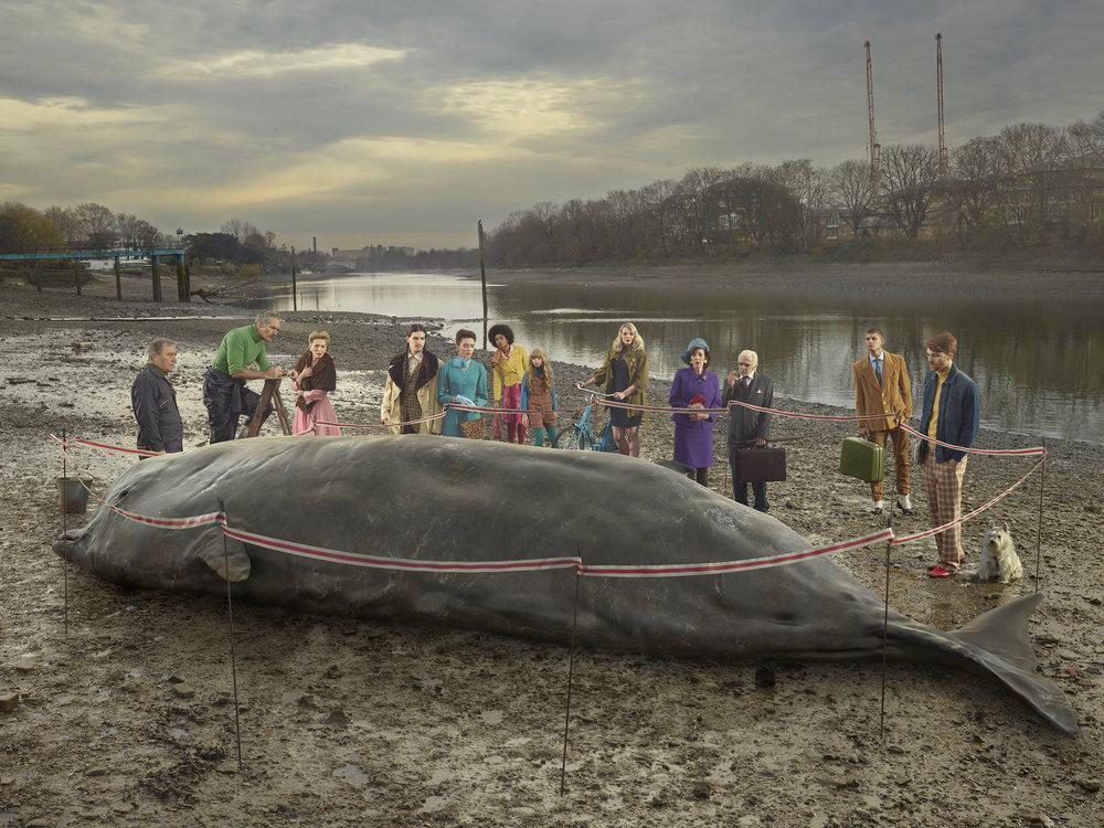 The Thames Whale, 2018  - Julia Fullerton-Batten