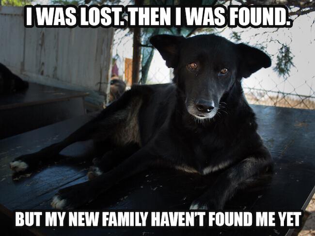 404-not-found.jpg