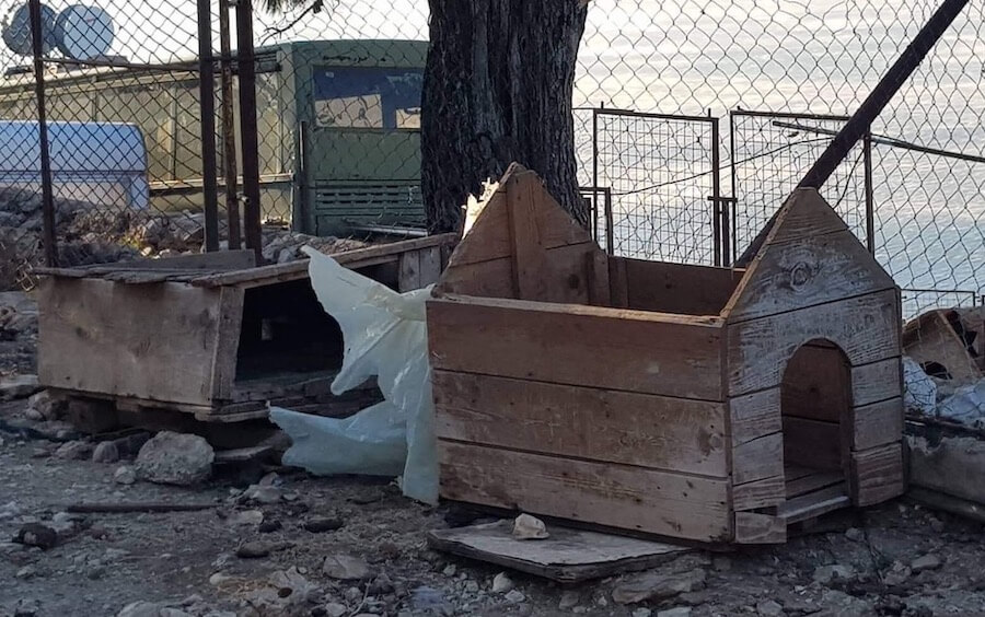 Roof of dog kennel flown off
