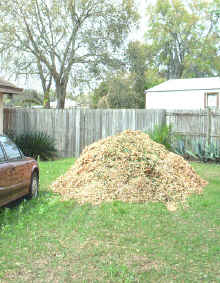 backup-woodchips.jpg