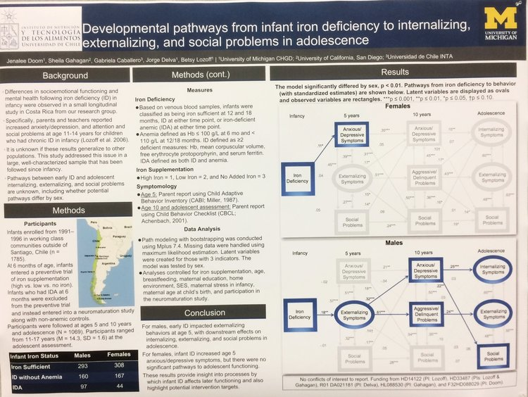 Here's an example of a scientific poster that scientists present at a conference. This is my poster talking about our research in Chile trying to understand how iron deficiency in the first 18 months of life affect our emotions and behavior into the teenage years!