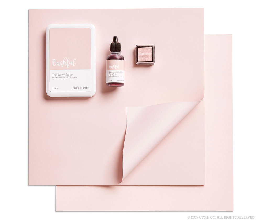 2017 - 2018 Color of the Year (Bashful).jpg