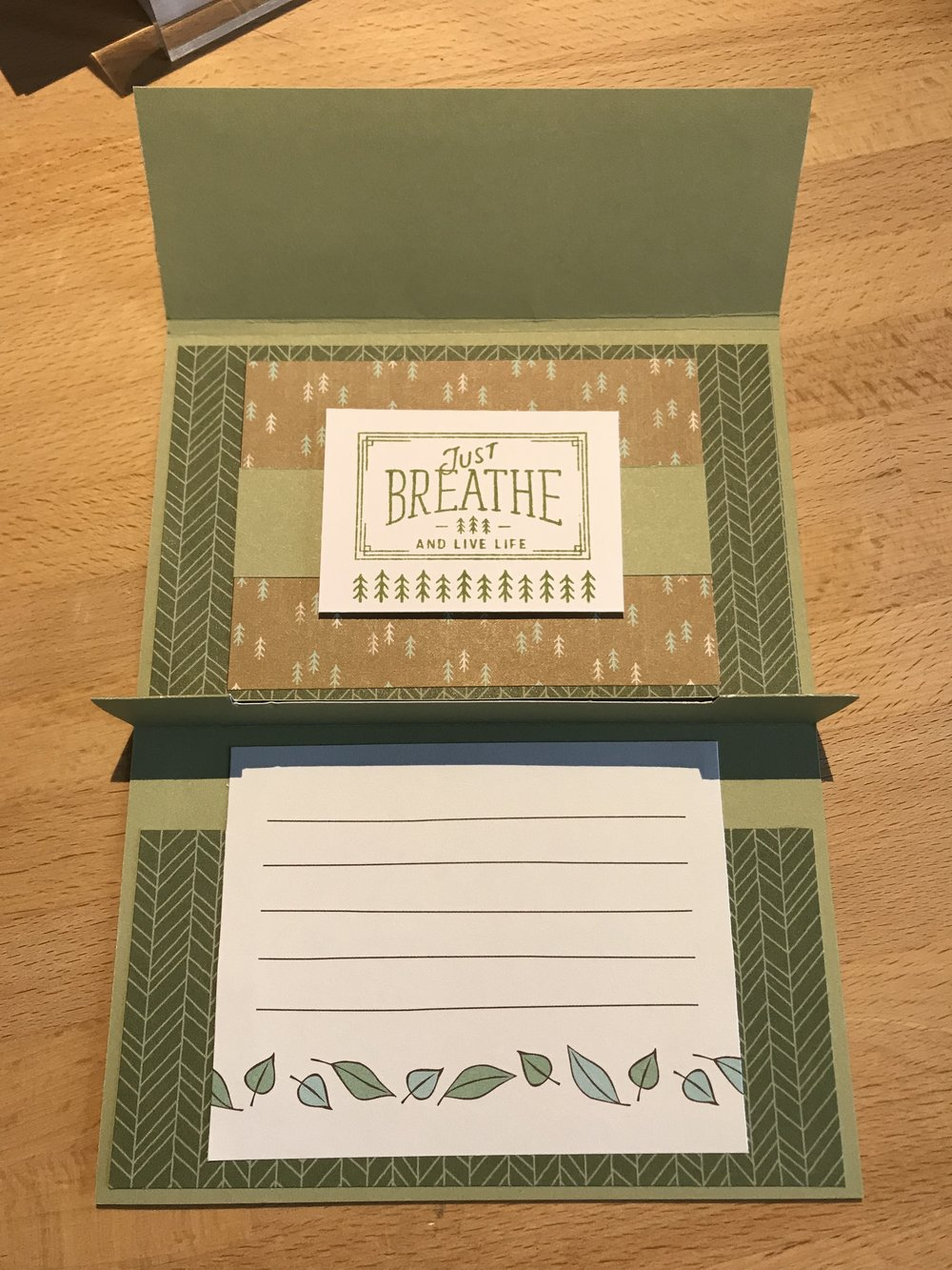 Fresh Air Gift Card Holder (CC tutorial) Inside wo GC.JPG