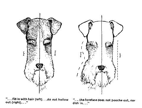 Diagram_H.jpg