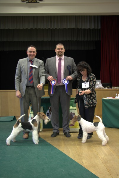 BEST IN SHOW (left) & RESERVE BIS
