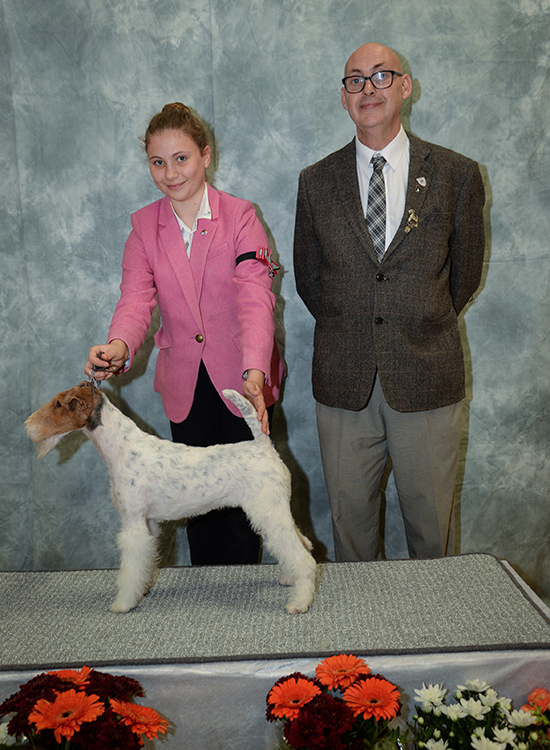 Best Junior Handler - Miss P Wynter
