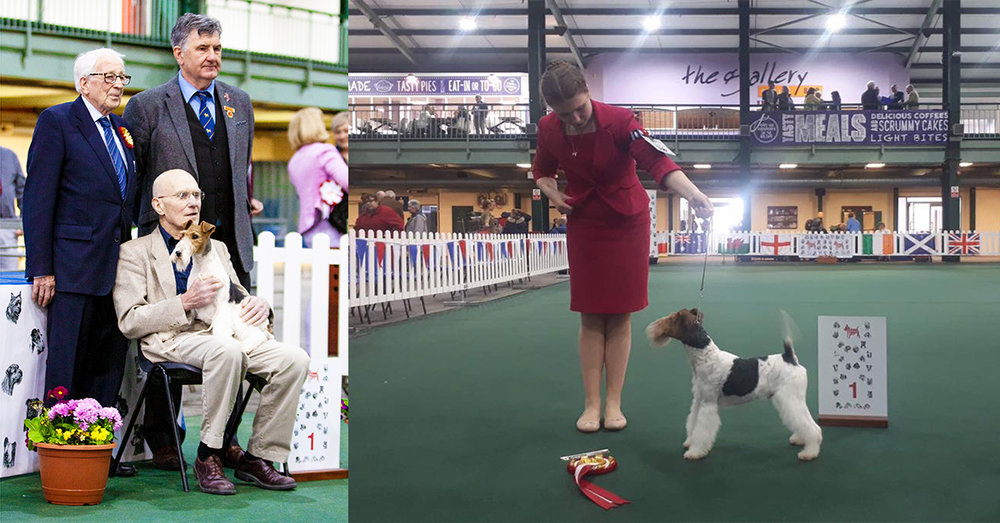 Left: Mr K Barrett with Tyquin Polar Ice, winning Best Puppy In Show. Right: Miss Poppy Wynter with Robelroy many dreams at furlongfox, winning Best Special beginner in show.