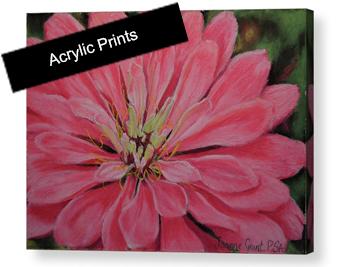 acrylic print image for squarespace.jpg