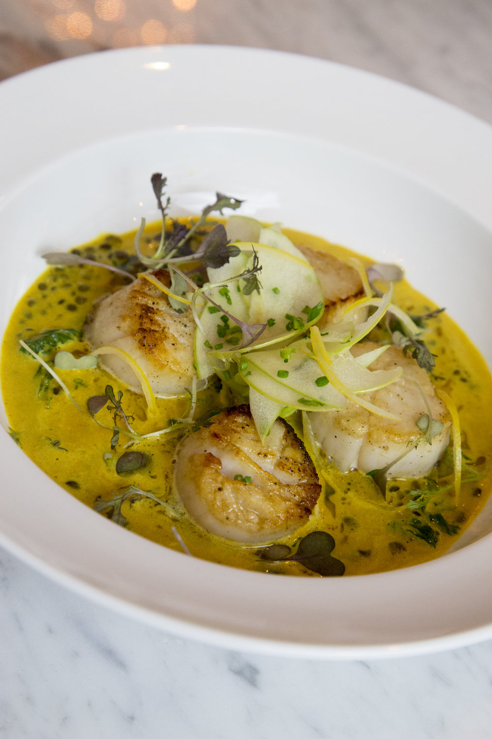 PE6_DC_PHOTO_SCALLOPS_1.jpg